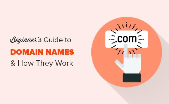 Что такое доменное имя и как работают домены?