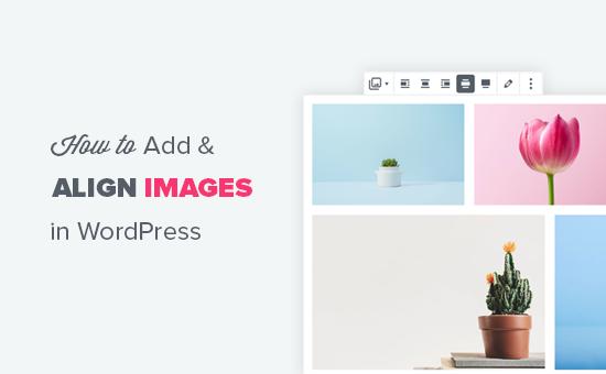 Как добавлять и выравнивать изображения в редакторе блоков WordPress (Гутенберг)