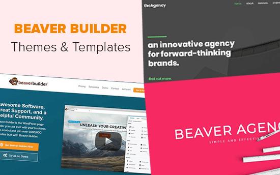 27 лучших тем и шаблонов для Beaver Builder (2019)