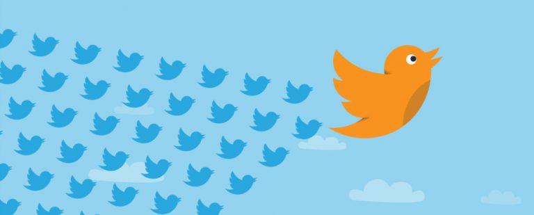 Как проверить, кто следит за кем в Твиттере