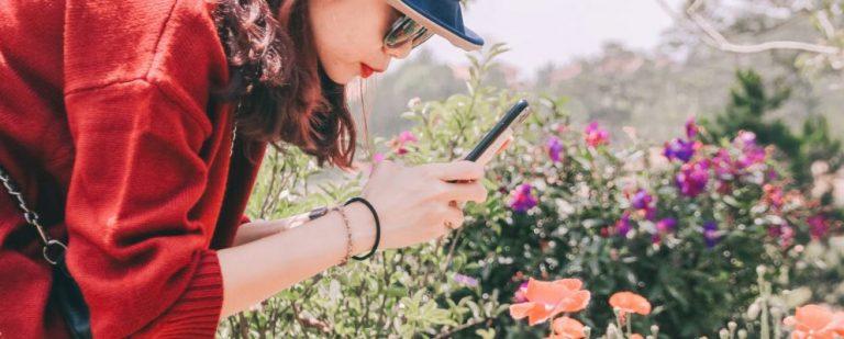 Лучшие мобильные садовые игры для Android и iPhone