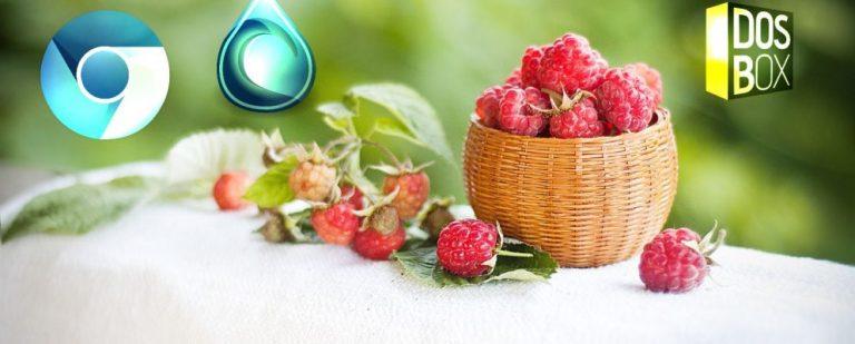 10 лучших приложений для установки на Raspberry Pi