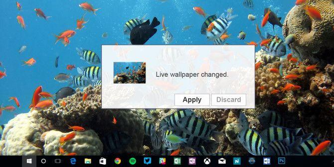 Как установить живые обои и анимированные фоны рабочего стола в Windows 10