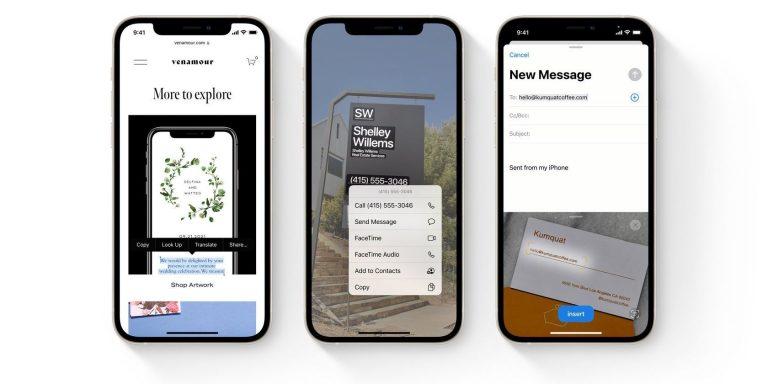 Как включить и использовать Live Text на вашем iPhone